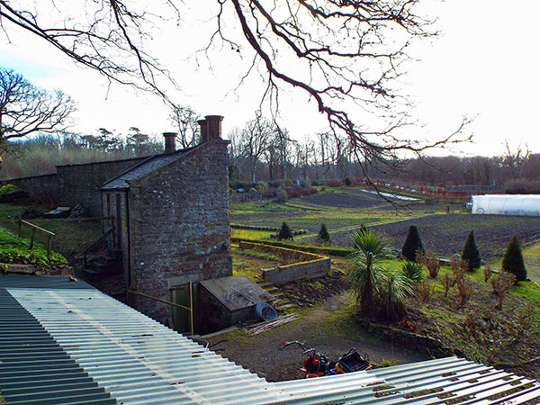 Picture of a walled garden