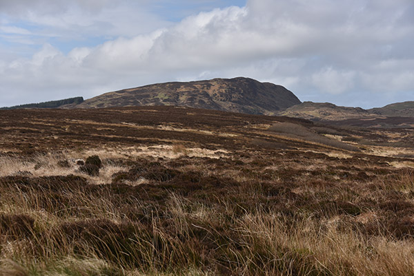 Picture of some rugged uncultivated rugged land